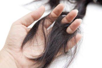 kelebihan minyak kelapa dara rambut